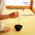 Sayama - Harmony (2008)