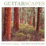 همراهی ملودیهای آرام و زیبای گیتار با صدای طبیعت در اثری از دن گیبسون
