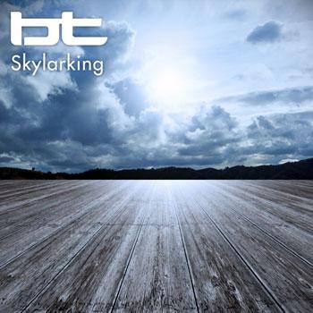 تک آهنگ فوق العاده زیبای Skylarking اثری بی نظیر از بیتی