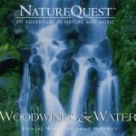 جستجوی طبیعت در آلبوم زیبای « فلوت و آب »