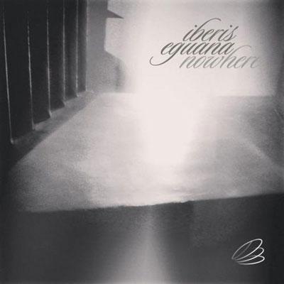 تجربه حس غم و دلتنگی با پیانو آیبریس و ایگوانا در آلبوم هیچ کجا