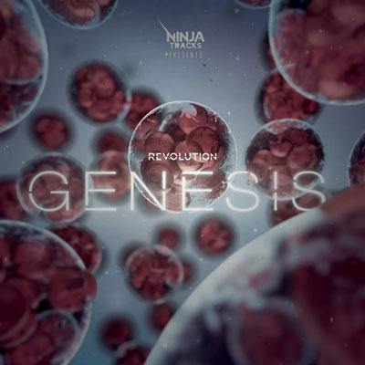 موسیقی حماسی و خیره کننده گروه نینجا ترکس در آلبوم انقلاب پیدایش