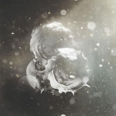 آلبوم « شب زنده داری » پیانو امبینت مسحور کننده ایی از ریچارد جی برکین