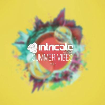 دانلود آلبوم زیبا و انرژیک « Intricate Records Summer Vibes Vol 2 »