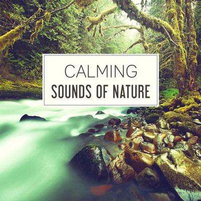 « صدای آرامش بخش طبیعت : 50 آهنگ آرامش بخش برای ریلکسیشن ، خواب عمیق و مادر طبیعت »