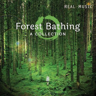 « شفای جنگل » آهنگ های آرامش بخش بیکلام از لیبل Real Music