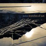 Branches of Sun ، آلبوم نئوکلاسیکال امبینت زیبایی از اوکای