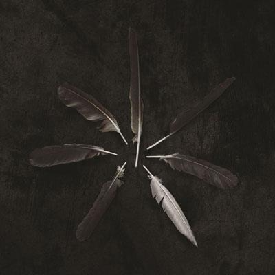 آلبوم موسیقی Dust and Disquiet آلترناتیو پست راک زیبایی از گروه Caspian