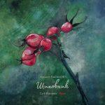 Rosa ، آلبوم موسیقی پیانو دراماتیک و روح نوازی از سیریل بارانوف