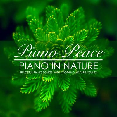 آلبوم موسیقی Piano in Nature پیانو های آرامش بخش با صدای طبیعت