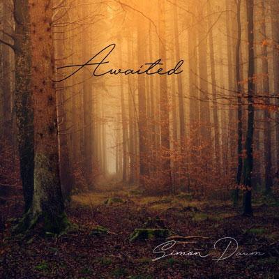 آلبوم موسیقی Awaited پیانو آمیخته با رنگ های طبیعت اثری از زیمون داوم