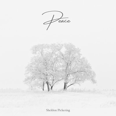 آلبوم موسیقی Peace ملودی های آرامش بخش زمستانی اثری از Sheldon Pickering