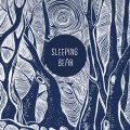 آلبوم موسیقی Sleeping Bear پست راک خیالی و قدرتمند