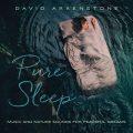 آلبوم Pure Sleep موسیقی همراه با صدای طبیعت برای آرامش رویایی از David Arkenstone
