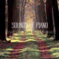 آلبوم Sounds of Piano موسیقی پیانو آرامش بخش با اجرای Luke Woodapple & Out of Berlin