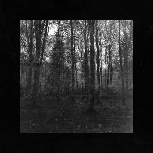 آلبوم Rain موسیقی تکنوازی پیانو آرام و دراماتیک از Borrtex