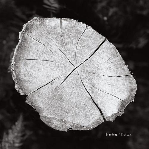 آلبوم Charcoal موسیقی امبینت تاریک رازآلود اثری از Brambles