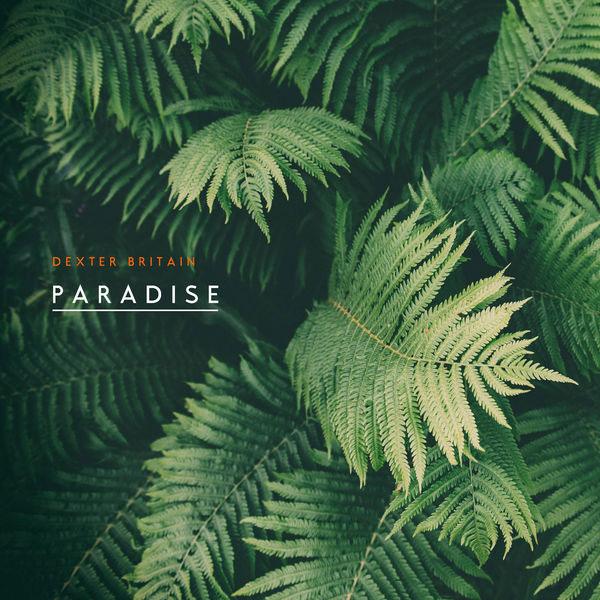 Paradise آلبوم موسیقی بی کلام الهام بخش و رویایی اثری از Dexter Britain