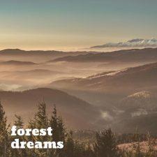 ملودی آرامش بخش و روح نواز پیانو Clearcut اثری از Forest Dreams