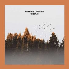 موسیقی پست راک امبینت رازآلود و خیالی Forest Air اثری از Gabrielle Chillmark