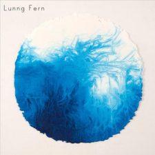 موسیقی گیتار آرام عاشقانه و تامل برانگیز Stumbling Home اثری از Lunng Fern