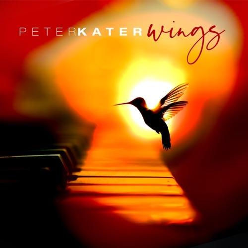 آلبوم Wings تکنوازی پیانو آرامش بخش و شورانگیز از Peter Kater
