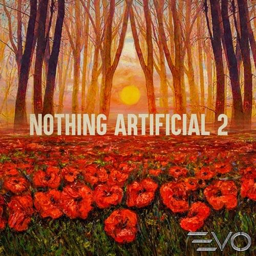 آلبوم Nothing Artificial 2 موسیقی مثبت پرانرژی امیدوار کننده اثری از Chase Bennett