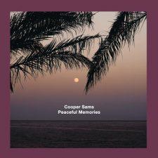 آهنگ Peaceful Memories موسیقی امبینت آرامش بخش از Cooper Sams