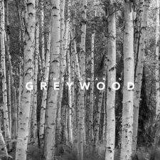 گیتار آرام مفرح و زیبای James Shanon در آهنگ Greywood