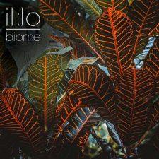 موسیقی داون تمپو چیل ویو زیبای Biome اثری از il:lo