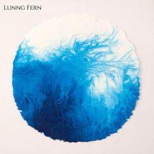 آهنگ The Dance موسیقی گیتار خیالی اثری از Lunng Fern