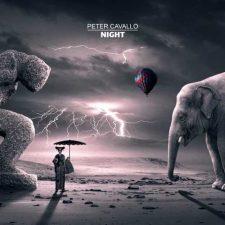 آهنگ Night موسیقی بی کلام پیانو اثری زیبا از Peter Cavallo