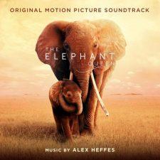 آهنگ ارکسترال دراماتیک The Waterhole & Enter The Queen از فیلم The Elephant Queen