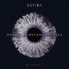 آهنگ Morpho موسیقی ترنس ریتمیک و پرانرژی از Estiva