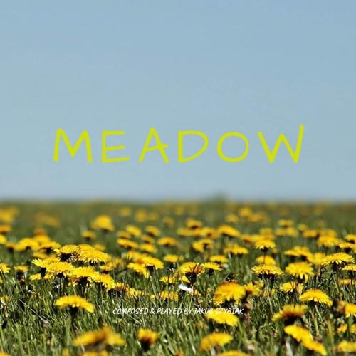 آهنگ Meadow تکنوازی پیانو آرامش بخش و تسکین دهنده از Jakub Szybiak