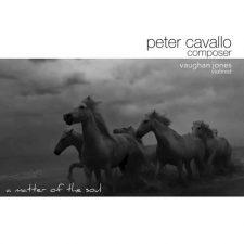 آهنگ A Matter of the Soul موسیقی کلاسیکال زیبایی از Peter Cavallo