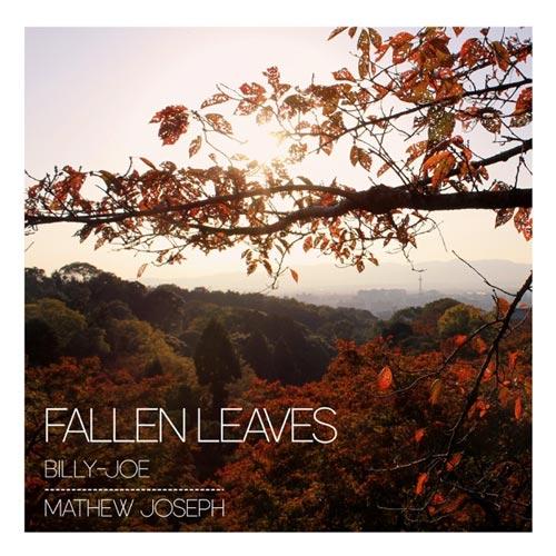 گیتار آرامش بخش احساسی Fallen Leaves اثری از Billy-Joe & Mathew Joseph
