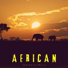 موسیقی بی کلام بومی African اثری با تم آفریقایی از AShamaluevMusic