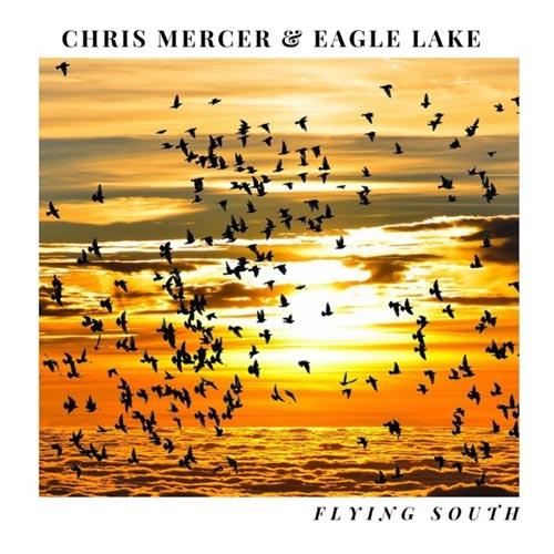 موسیقی Flying South گیتار آرام و دلنشین از Chris Mercer