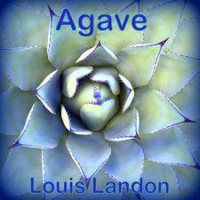 تکنوازی پیانو آرامش بخش Agave اثری از Louis Landon