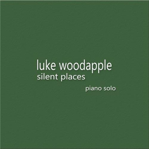 آلبوم Silent Places تکنوازی پیانو آرامش بخش اثری از Luke Woodapple