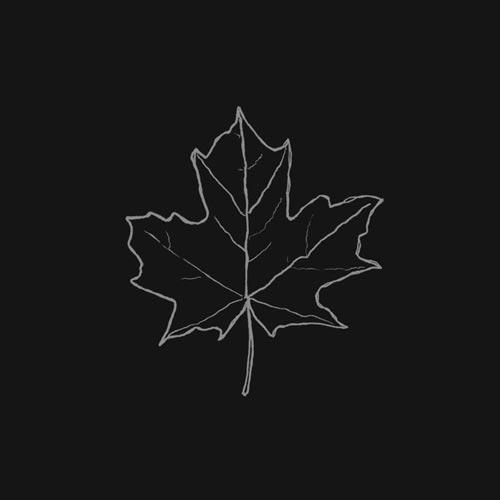موسیقی پیانو امبینت آرامش بخش Leaf اثری از Nick Box