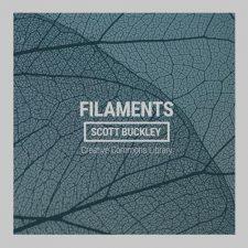 موسیقی امبینت Filaments پیانو عمیق و تامل برانگیز از Scott Buckley