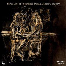 موسیقی پیانو غم آلود و حزن انگیز The End is a Tough Place to Start From اثری از Stray Ghost