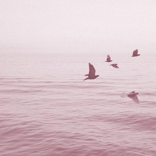 موسیقی الکترونیک رویایی Views from Sixteen Stories (Sun Rain Remix) اثری از Alaskan Tapes