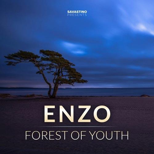 آلبوم Forest of Youth موسیقی پیانو آرامش بخش و تسکین دهنده از Enzo