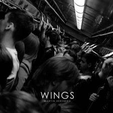 موسیقی بی کلام Wings پیانو عمیق و تامل برانگیز از Martin Herzberg