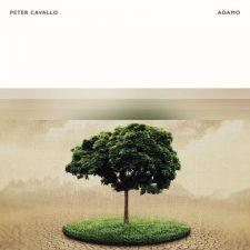 موسیقی پیانو آرامش بخش Adamo اثری از Peter Cavallo