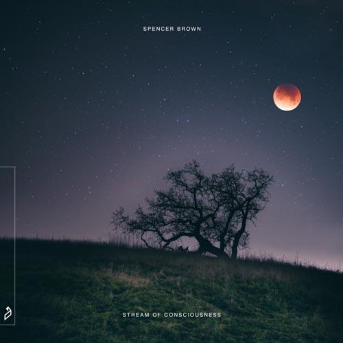 آلبوم Stream of Consciousnes موسیقی پراگرسیو هاوس ملودیک از Spencer Brown