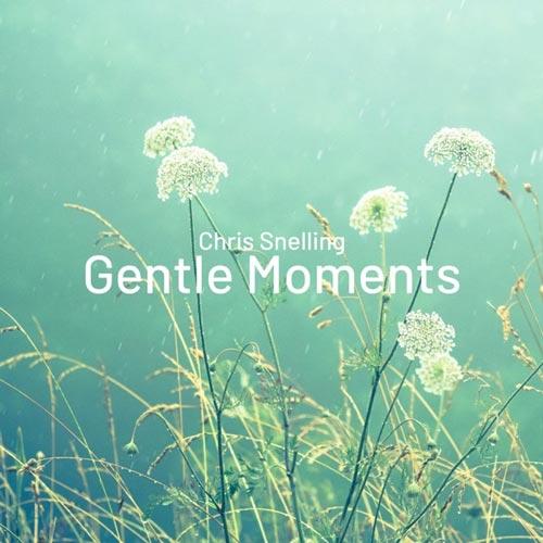 آلبوم موسیقی بی کلام Gentle Moments اثری از Chris Snelling
